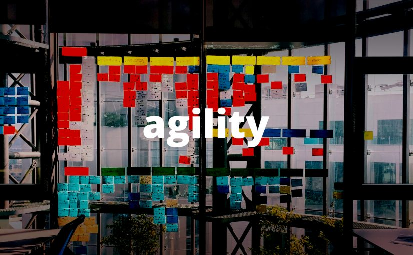 The Essence of Agility